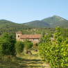 Bocal de FRAMBOISES SAVOUREUSES enrichies à l'eau de vie – Abbaye de Rosans – 280 g de Epicerie fine