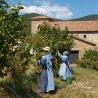 MIEL ET NOISETTES – Abbaye de Rosans – 235 g de Epicerie fine