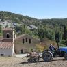 FARINE INTEGRALE DE PETIT EPEAUTRE DE L'ABBAYE – cultivé par les moniales de l'abbaye de Rosans – 1 kg de Epicerie fine