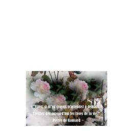 Carte amitié n'attendez à demain cueillez des aujourdhui les roses de la vie Artisanat monastique