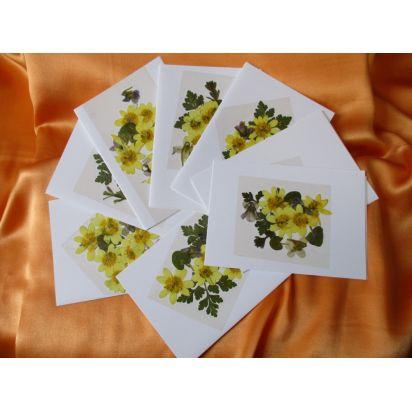 Carte du jardin fleurs jaunes de Cartes de la Nature