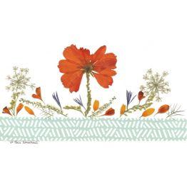 carte fleurs naturelles séchées, une invitation à la louange