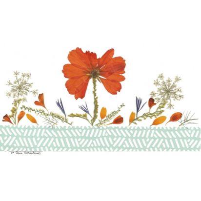 carte fleurs naturelles séchées, une invitation à la louange de Carterie