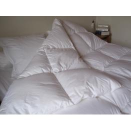 achetez en ligne notre oreiller naturel plume ray gris format carr. Black Bedroom Furniture Sets. Home Design Ideas