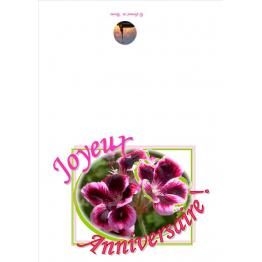 Carte de vœux anniversaire de Anniversaire, fêtes, mariage...