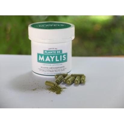 PLANTE DE MAYLIS - GELULES (100) en pot à vis de Beauté - Santé - Bien-être