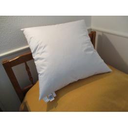 Oreiller naturel plume blanc format carré de Literie & Linge de lit