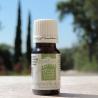 huile essentielle de romarin de Parfums & Huiles essentielles
